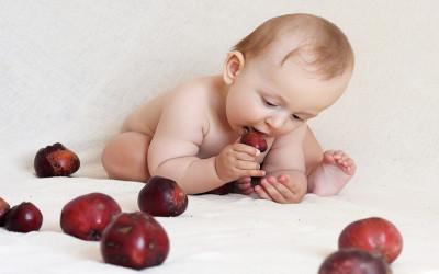 Nutrisi yang Bagus dapat Meningkatkan Kecerdasan Anak