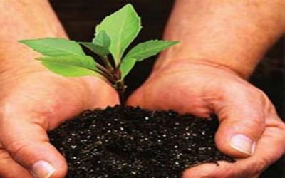 Gerakan Cinta Bumi untuk Menjaga Lingkungan Berkelanjutan