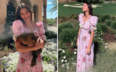 Kendall Jenner Pose Sama Ayam, Harga Bajunya Bikin Nangis