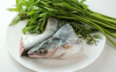 Khasiat Ikan Patin Ternyata Sangat Mengejutkan, Rasanya Gurih