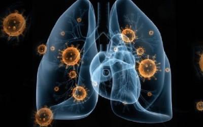 Oh My God... Hasil Studi Terbaru Virus Corona Mencengangkan