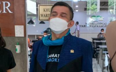 Peran Ban Serep Wapres, Hinca Pandjaitan Beri Komentar Menohok