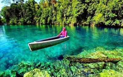 Wajib ke Berau, Ada Surga Laut di Tengah Nusantara