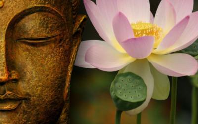 Hari Raya Waisak, Makna Bunga Teratai yang Ada di Simbol Buddha