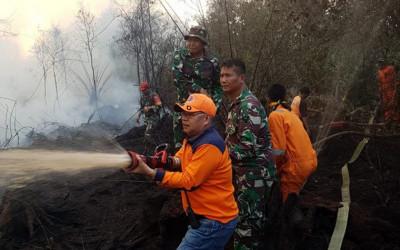Kebakaran Hutan Melahap 20 Hektare Lahan di PALI Sumsel