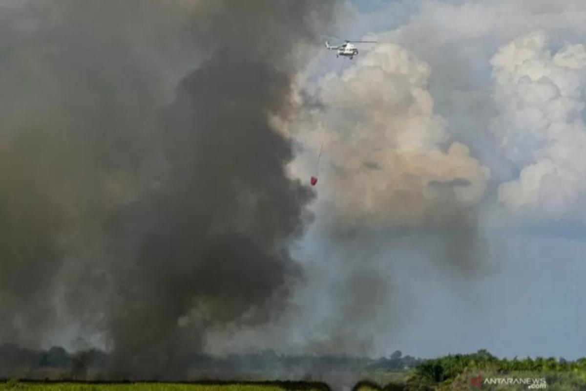 Sebanyak 1.423 Bencana Alam Terjadi di Indonesia Kurun 6 Bulan