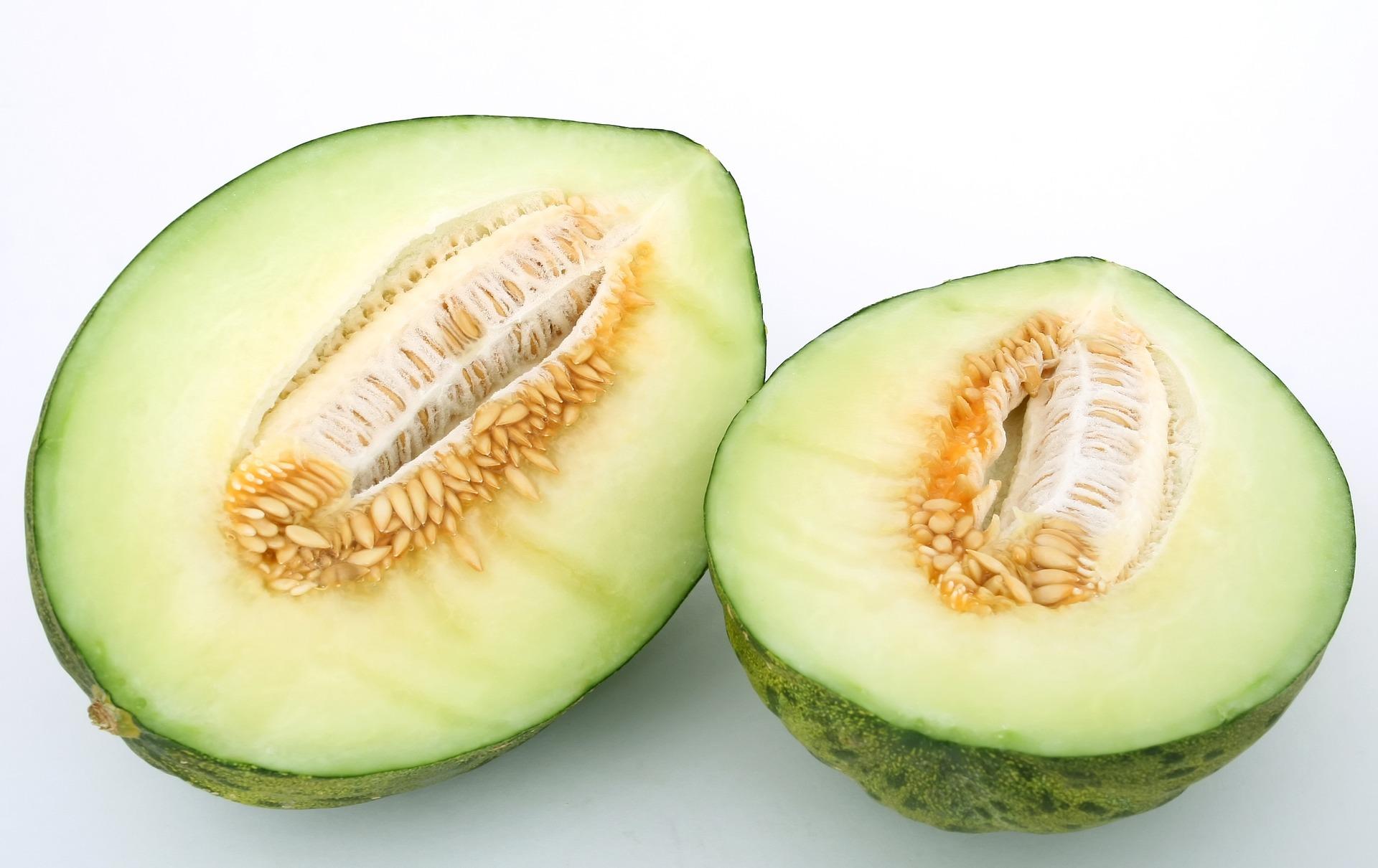 Biji melon ternyata memiliki khasiat yang mujarab, dijamin pasangan makin nempel. (foto: pixabay)