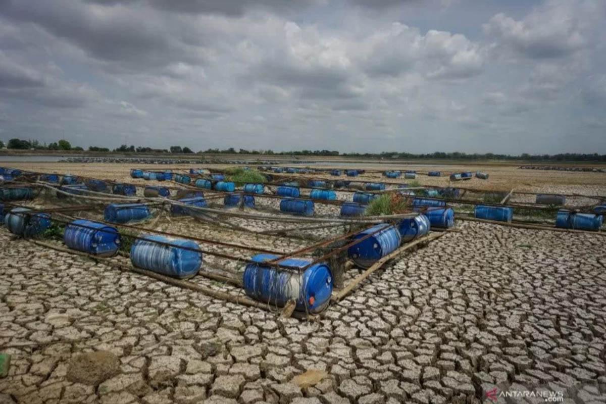 Ilustrasi - Keramba jaring apung dibiarkan nelayan terbengkalai di dasar waduk, Senin (4/11/2019), karena tidak mendapat pasokan air dari Waduk Muluryang airnya menyusut karena hujan lama tidak turun. (ANTARA/MOHAMMAD AYUDHA)