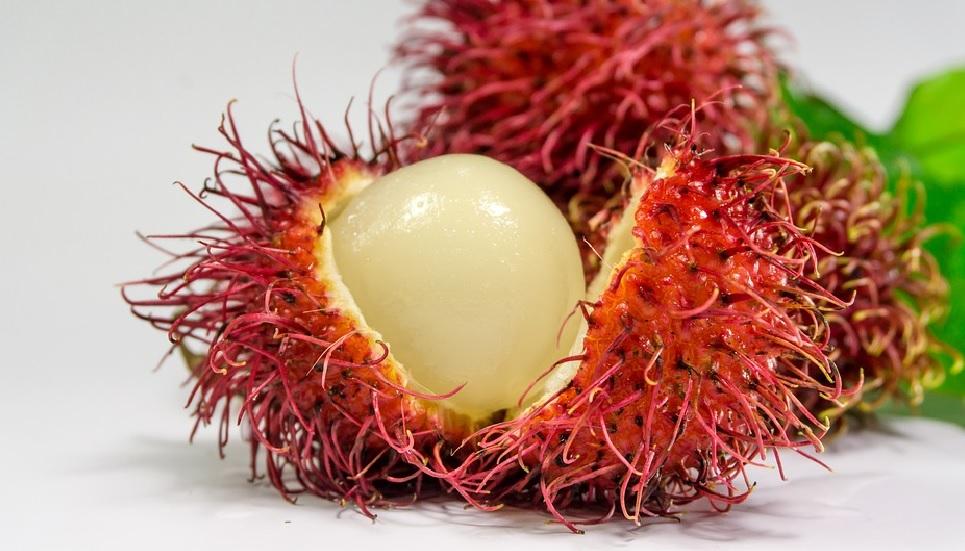 7 Khasiat Minum Jus Rambutan, Bisa Bikin Istri Kewalahan (Foto: Pixabay)