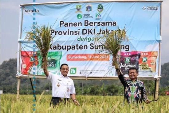 Gubernur DKI Jakarta Anies Baswedan melakukan panen raya bersama Bupati Sumedang. (Foro: Instagram. @aniesbaswedan)