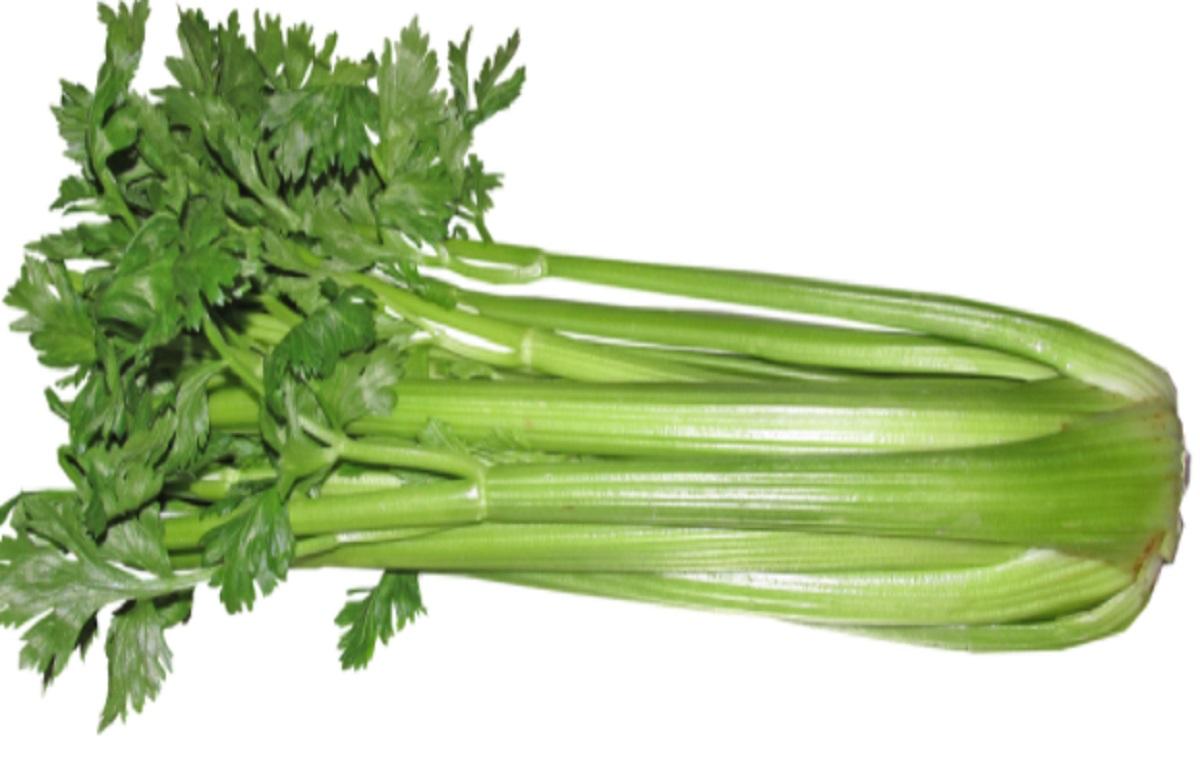 Ilustrasi: Sayuran seledri (foto: Pixabay)