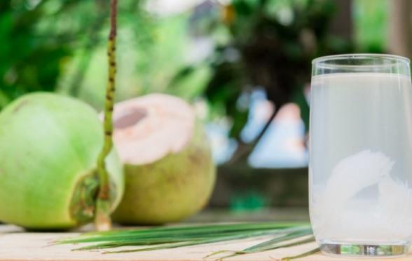 Minum Air Kelapa Hijau Campur Madu Khasiatnya Mencengangkan