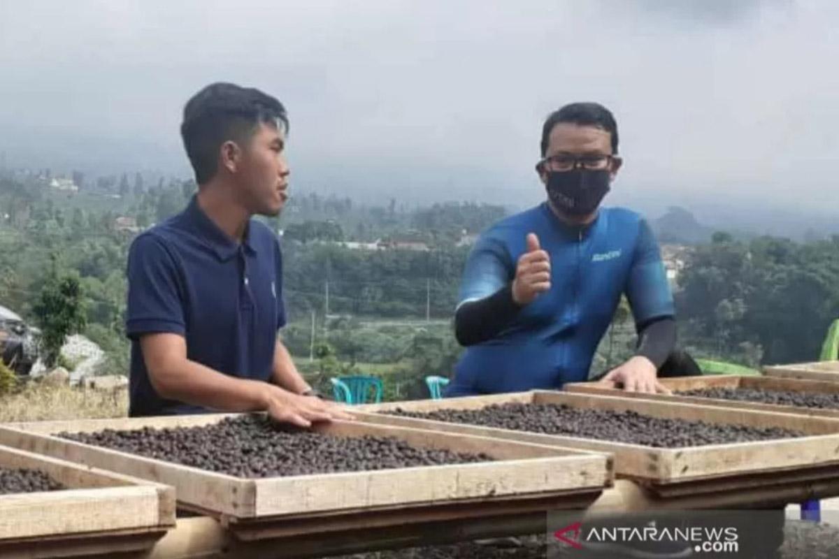 Wakil Bupati Temanggung Heri Ibnu Wibowo meninjau pengolahan kopi di Desa Petarangan, Kecamatan Kledung, Kabupaten Temanggung. (FOTO: ANTARA/Heru Suyitno)
