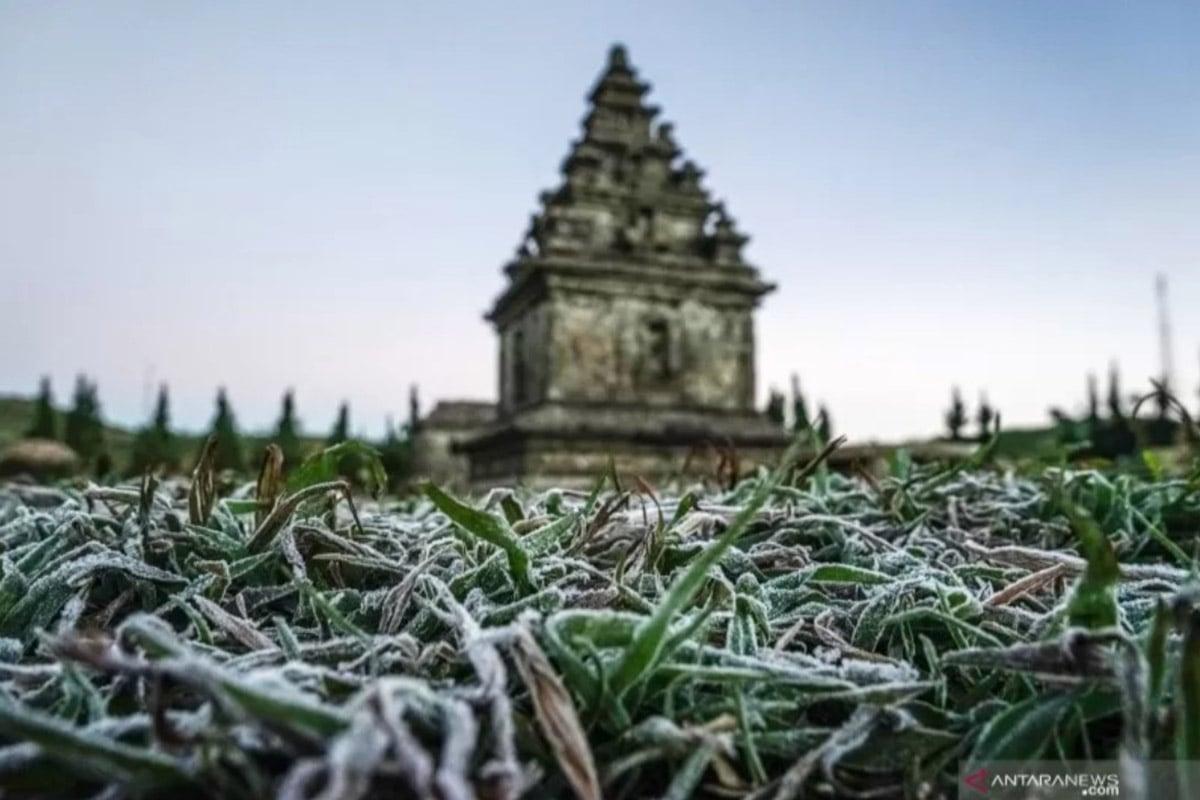 Embun beku yang muncul akibat penurunan suhu hingga minus tujuh derajat celcius menyelimuti kompleks Candi Arjuna, di dataran tinggi Dieng, Banjarnegara, Jawa Tengah, Selasa (25/6/2019). (FOTO: ANTARA/Idhad Zakaria)