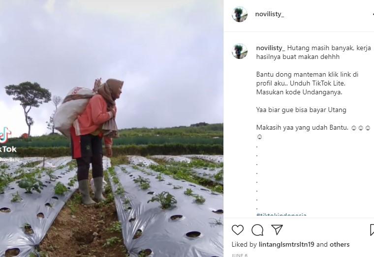Wow! Novi Mantan Penyanyi Dangdut yang Cantik Bisnis Sayuran