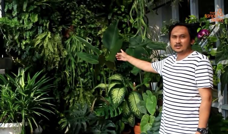 Taman Rumahnya Banyak Dilirik, Deni Kini Pebisnis Tanaman Sukses