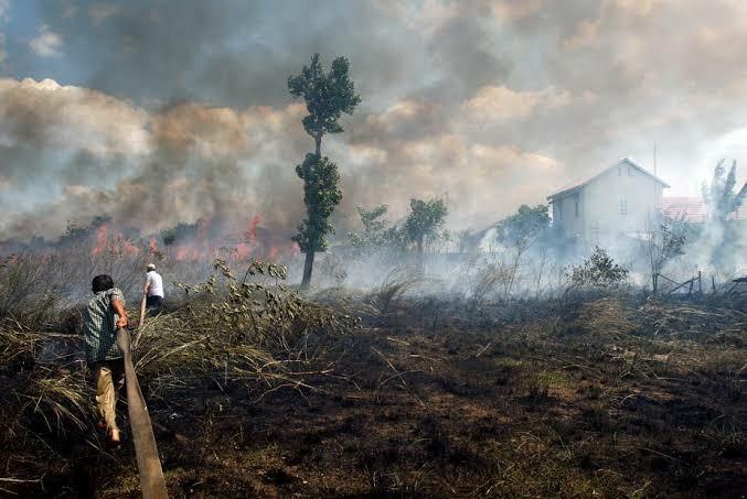 Indonesia dituding sebagai penyebab kabut asap yang melanda Malaysia hingga negarai itu terpaksa meliburkan ratusak sekalohanya. (Foto: The Conversation)