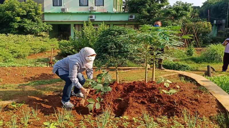 Destinasi agrowisata edukasi segera hadir di Jaksel (foto: GenPI.co)