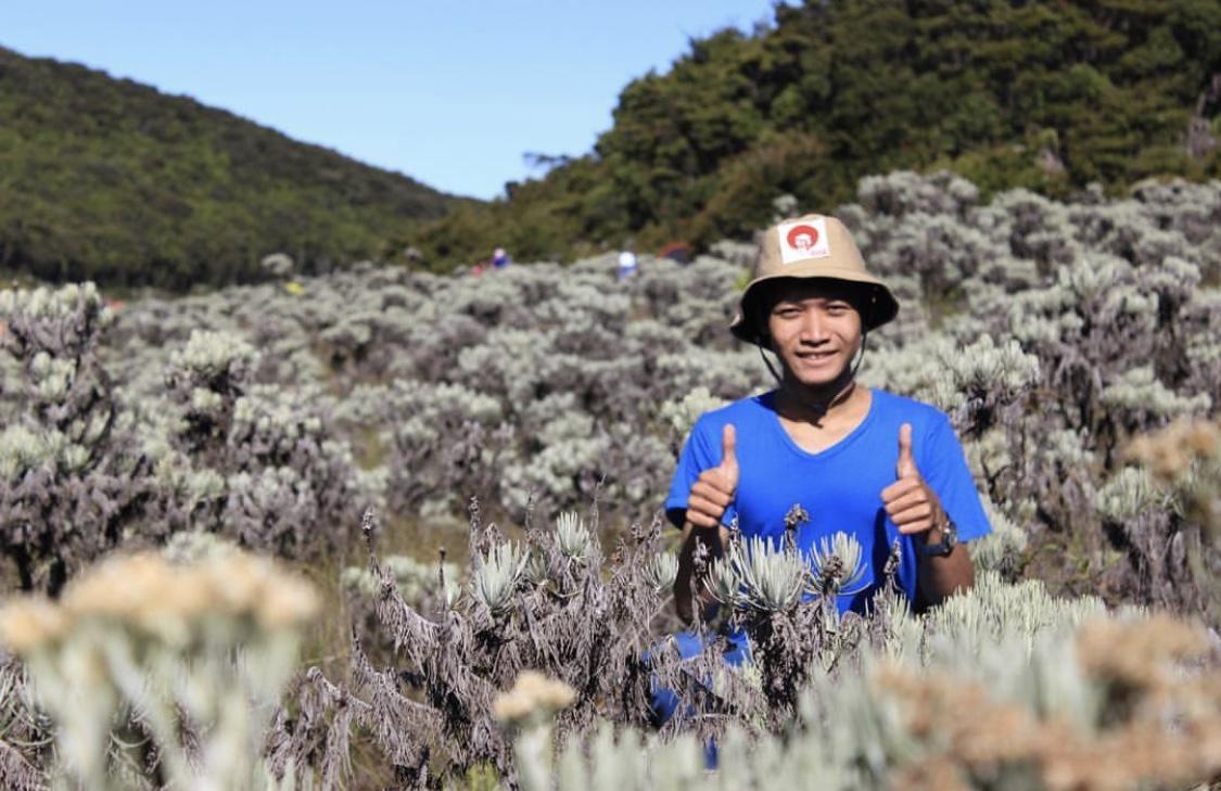 Wah Gunung Gede Ternyata Punya Kebun Edelweiss Nan Indah