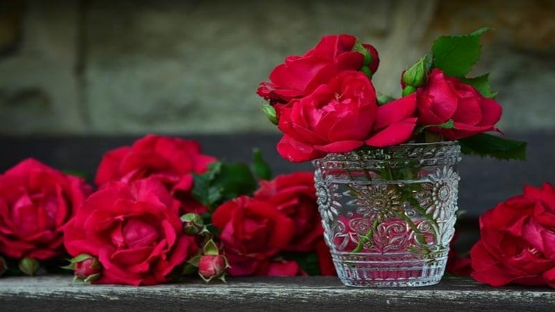 Bunga mawar yang menjadi simbol tanda cinta seseorang (foto: Pixabay)