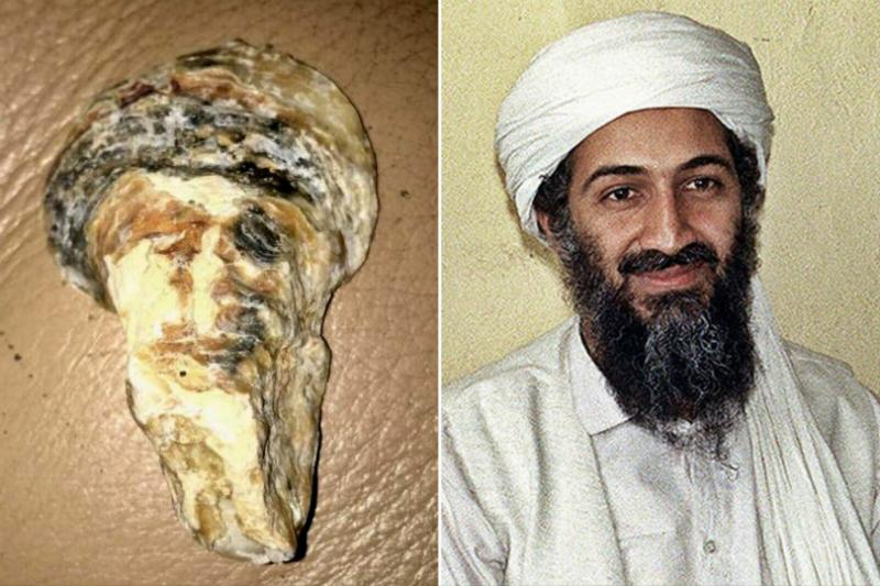 Kepingan kerang ini mirip banget dengan eks pemimpin Al-Qaeda, Osama Bin Laden. Fakta unik yakni, dia juga dimakamkan di laut! (Foto : Ny Post)