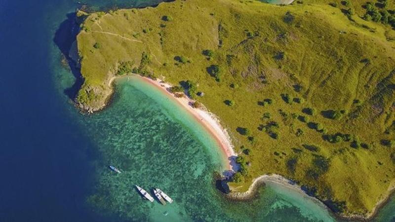 Pantai Pink di Flores (foto: Istock)