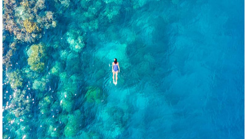 Wakatobi Miliki Alam Bawah Laut yang Molek, KKP Lindungi Ini