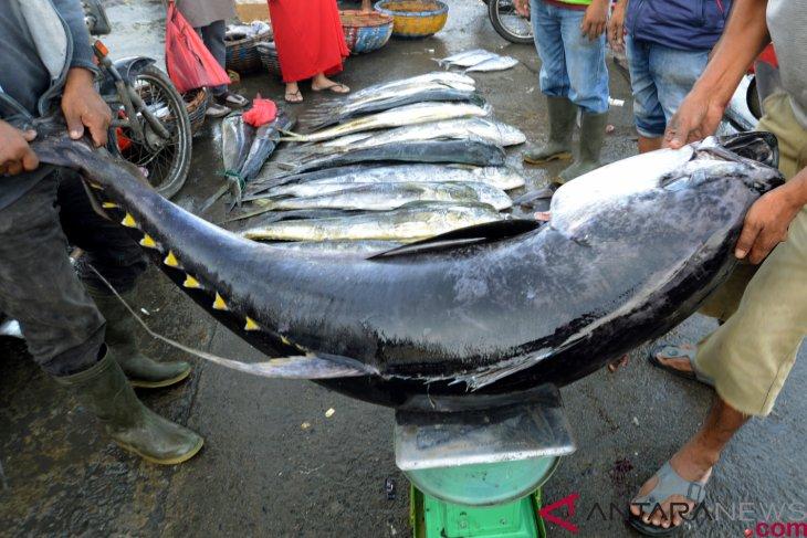 Ilustrasi - Total nilai ekspor produk perikanan Indonesia pada tahun 2018 mencapai USD4,86 miliar. Jepang merupakan mitra dagang utama kedua setelah AS. (Sumber foto: Antaranews)