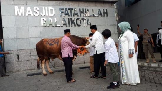 Anies Baswedan gaet 5 chef dari hotel ternama untuk pengemasan hewan kurban (Foto : Istimewa)
