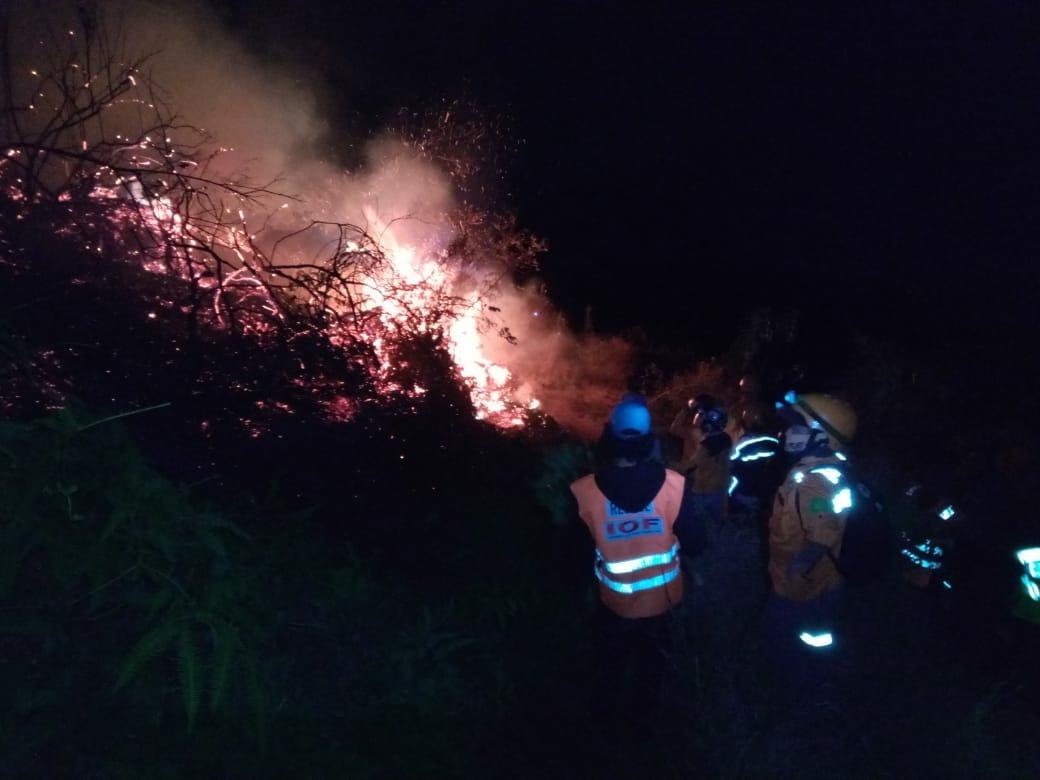 Kebakaran di lereng Gunung Sumbing berhasil ditanggulangi (Foto : Bowo Prau)
