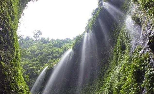 Air Terjun Madakaripura. (Foto: agenwisatabromo.com)