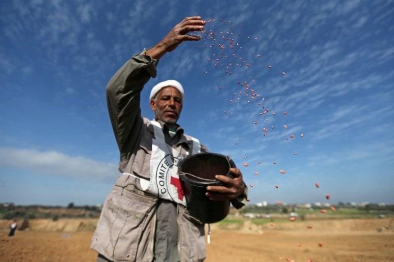 Dokumentasi: Seorang petani Palestina di dekat perbatasan Israel-Gaza di pusat Jalur Gaza, Senin (3/2/2020). (Foto: Antara/Reuters/Ibraheem Abu Mustafa)