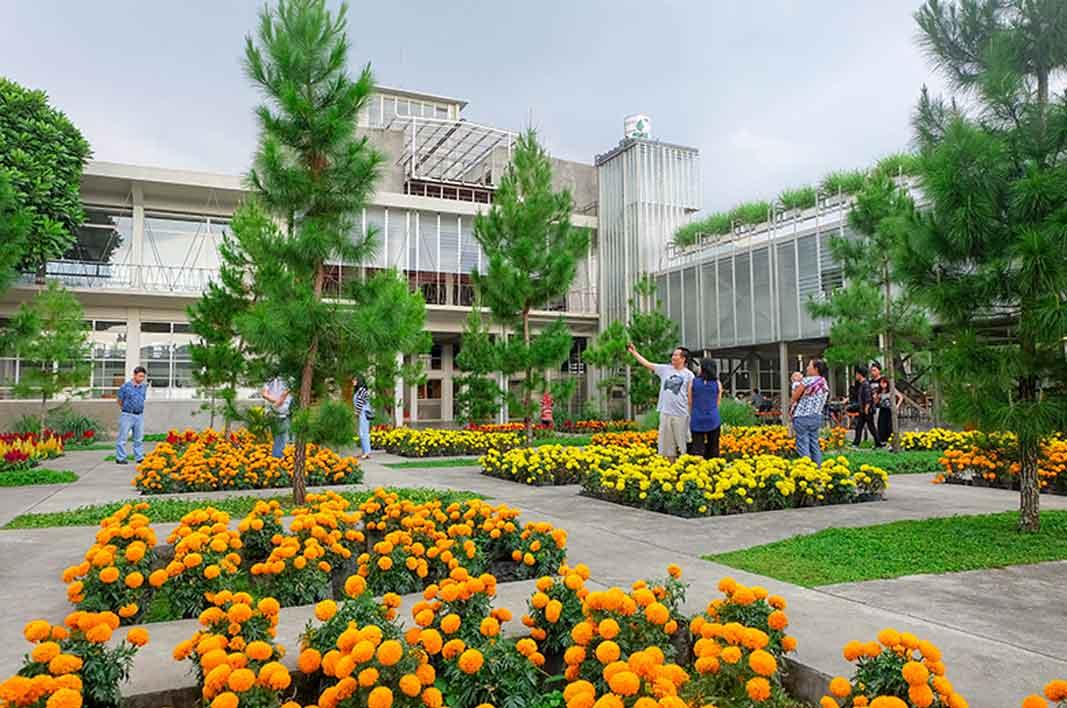 Serunya Wisata Kesehatan Sambil Lihat Bunga di Rumah Atsiri