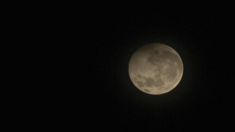 Tampilan sempurna gerhana matahari penumbra di Aceh (foto: Antara)