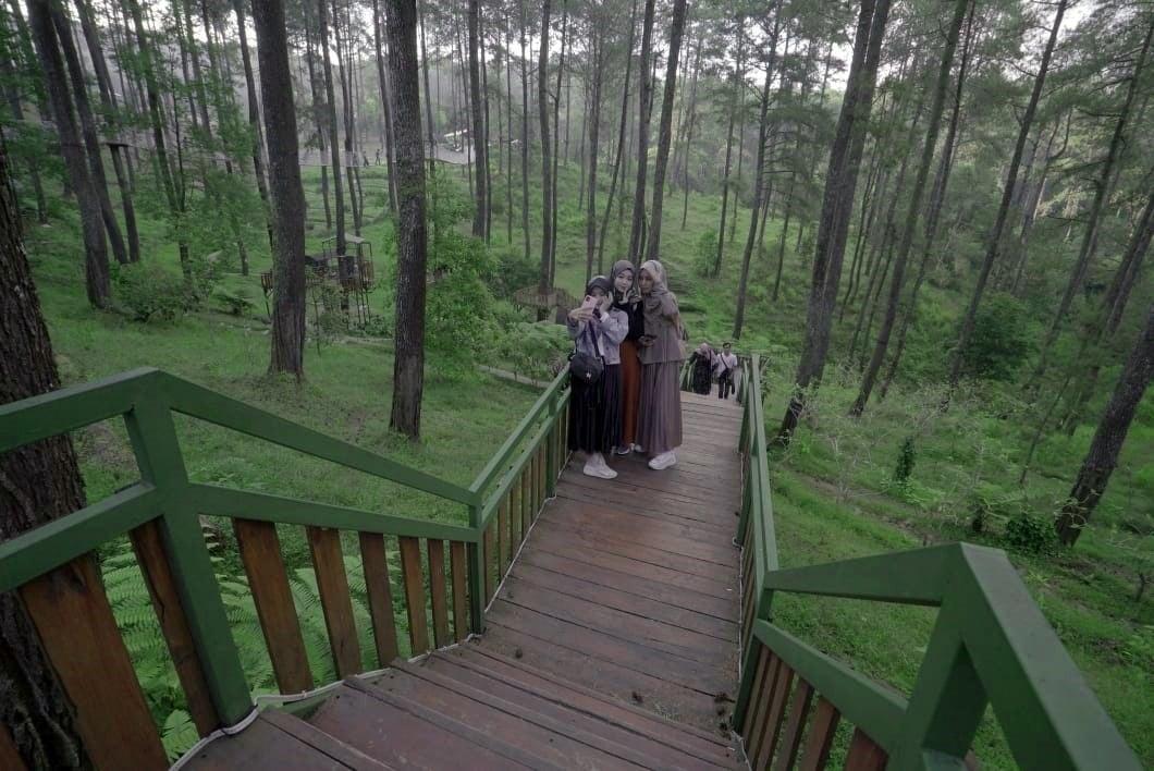 Orchid Forest Cikole, salah satu destinasi wisata paling Instagramable. (Foto: Sapta Priwasana/GenPI.co)