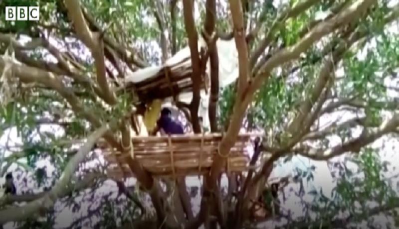 Takut Tertulari Corona, Masyarakat India Isolasi di Atas Pohon