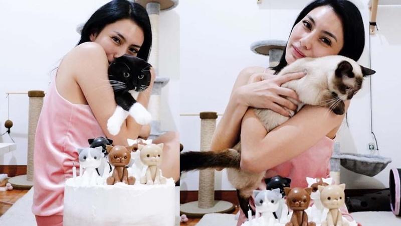 Kucing Tyas Mirasih Menggemaskan, Bikin Ramai saat di Rumah Aja