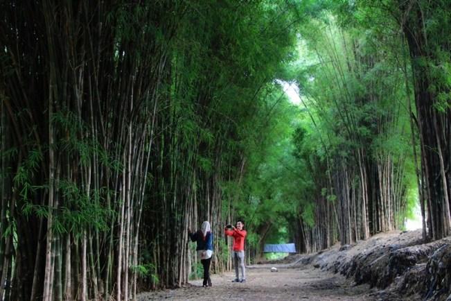 Liburan ke Surabaya, Ini 3 Tempat Wisata yang Asyik dan Kekinian