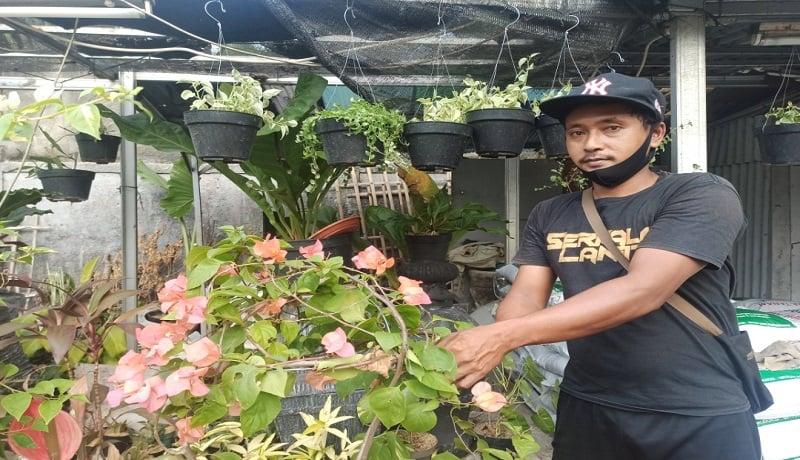 Yatiman, spesialis tanaman (Foto: Andi Ristanto/GenPI.co)