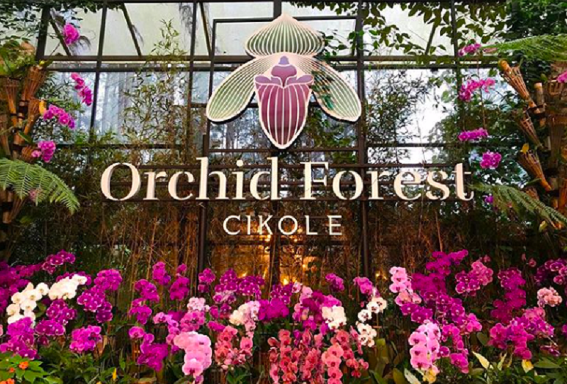 Orchid Forest Cikole, destinasi wisata Bandung yang mengusung konsep alam terbuka (foto: Instagram @orchidforestcikole)