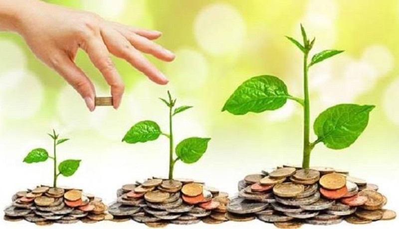 ilustrasi: investasi ( foto: pixabay)