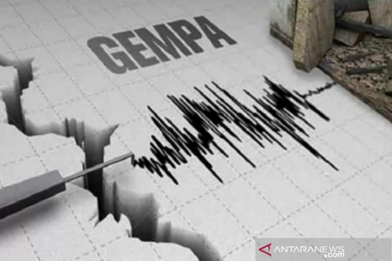Ilustrasi gempa bumi (Foto: Antara/Harianto)