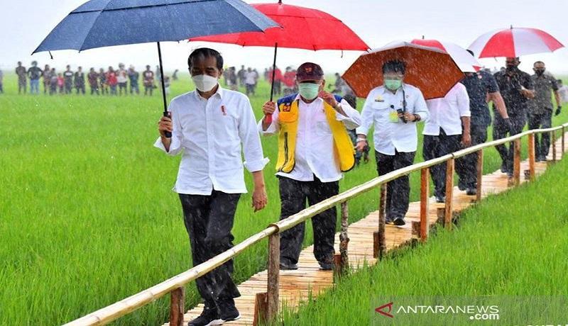 Presiden Jokowi saat kunjungan ke Maumere, NTT. FOTO: Antara