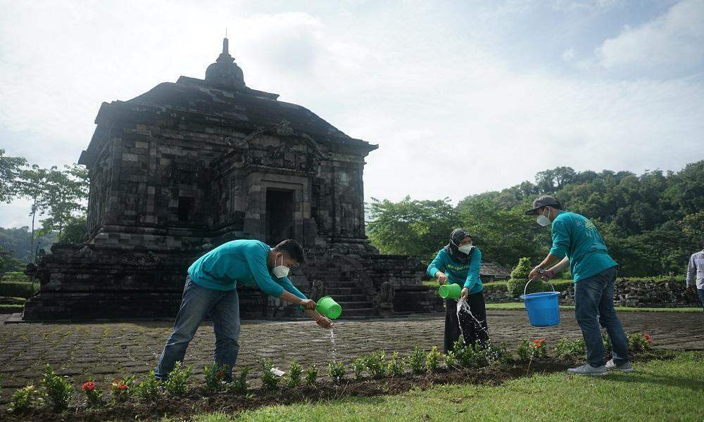 Kegiatan Siap Darling menanam pohon di salah satu candi di Yogyakarta. FOTO: Megapro