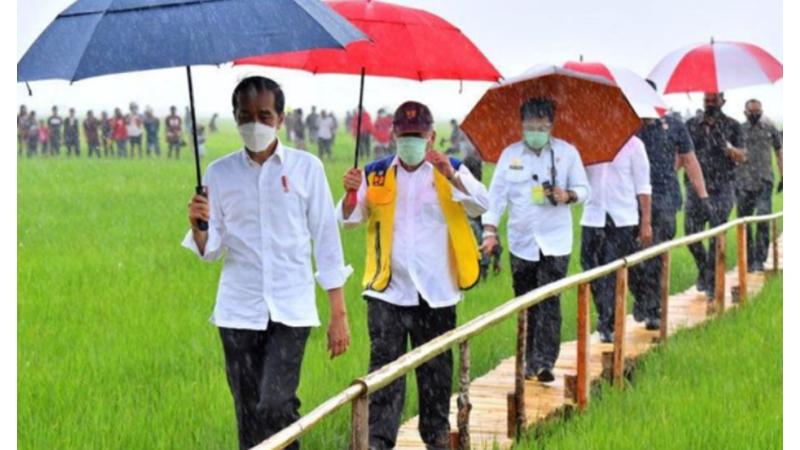 Kerumunan Jokowi vs Nikahan Putri Rizieq, Ini Kata Politikus Top