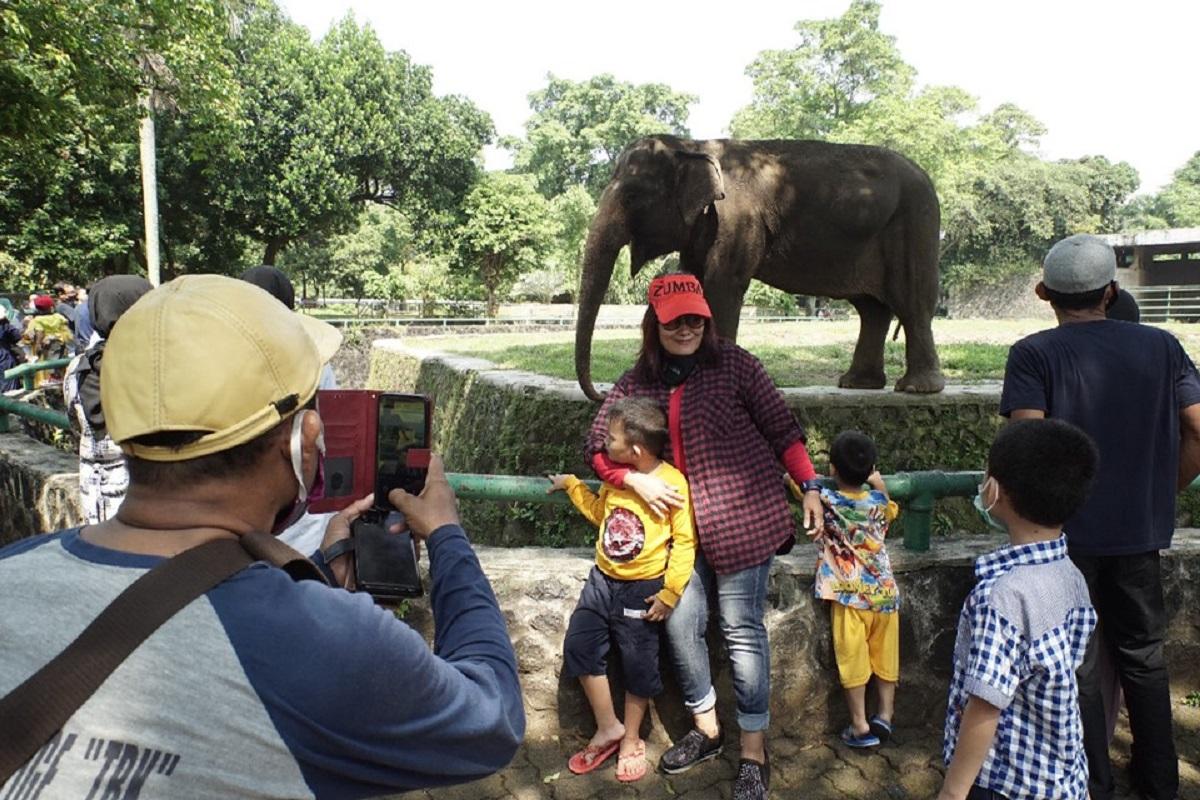 Pengunjung Membeludak, Ancol, TMII, Ragunan Tutup Hingga 17 Mei (foto: GenPI.co)