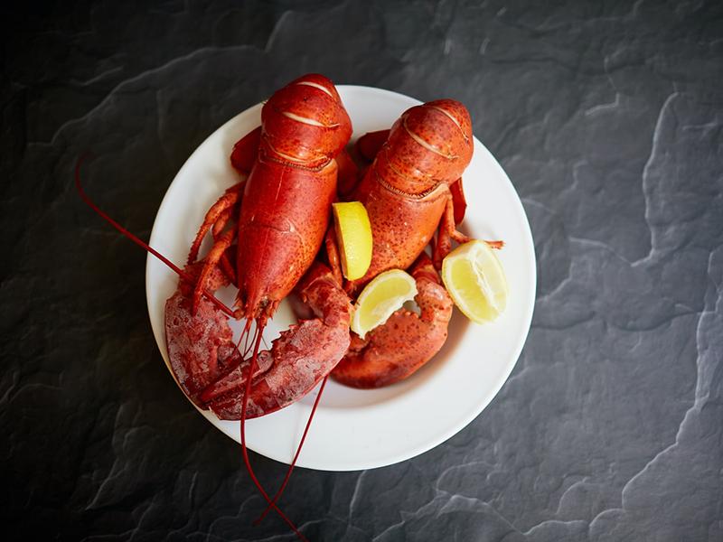 Ilustrasi hidangan lobster. Foto: Unsplash