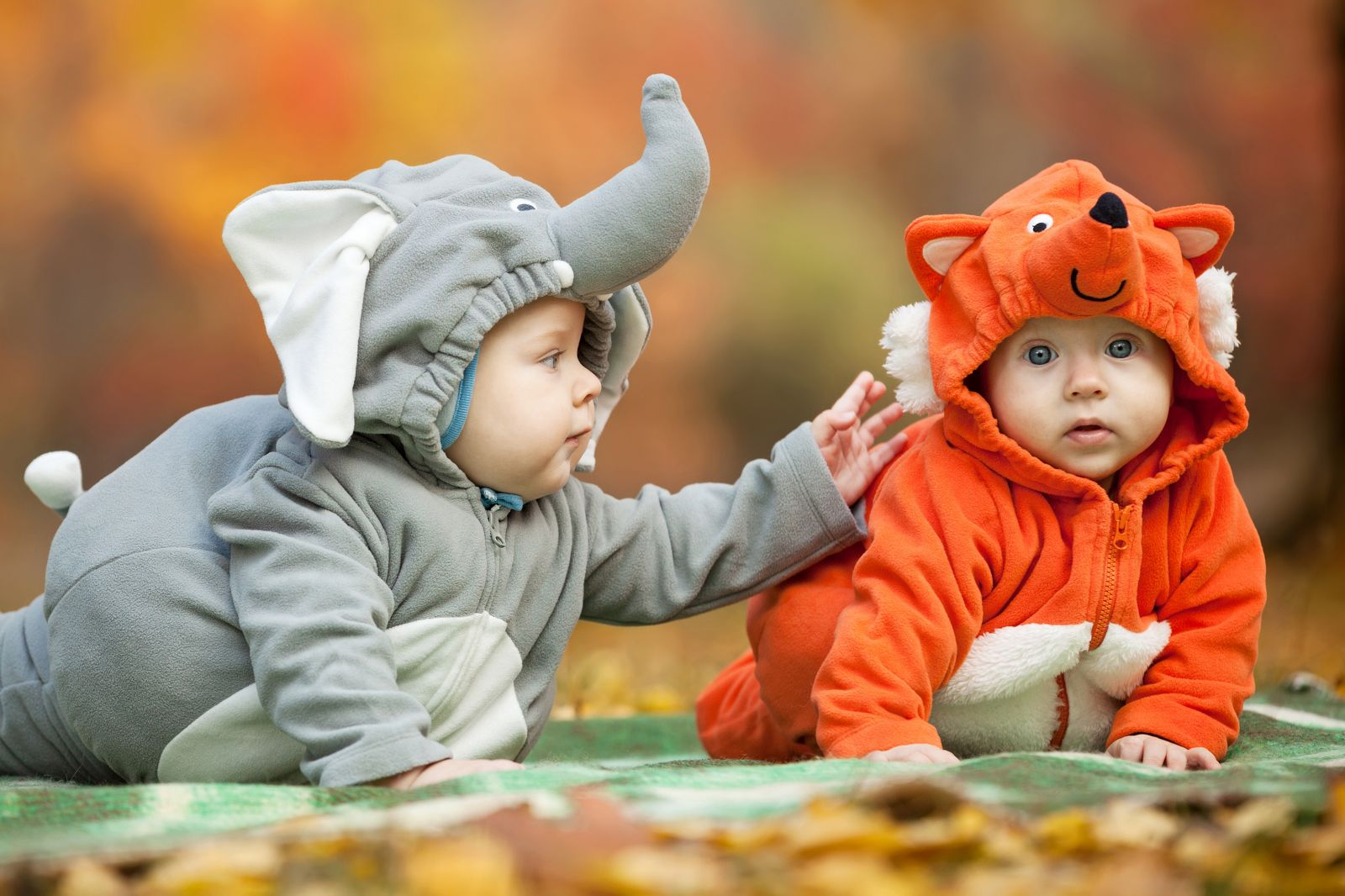 Ilustrasi bayi kembar. Foto: Elements Envato