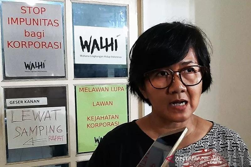 Direktur Eksekutif Walhi, Nur Hidayati. Foto: ANTARA