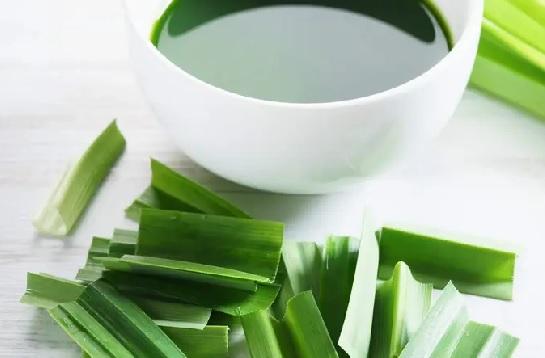 Manfaat Daun Suji Tak Bisa Disepelekan, Kolesterol Bisa Ambrol (Foto: Shutterstock)